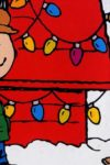 "Image from the movie ""A Charlie Brown Christmas"""